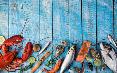 A Beginner's Guide to a Seafood Allergy
